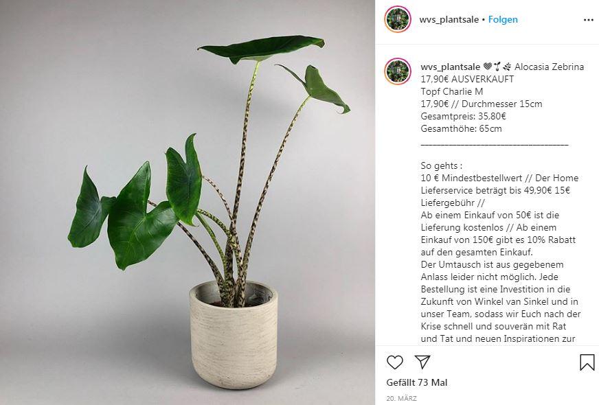 Auf Instagram verkaufen